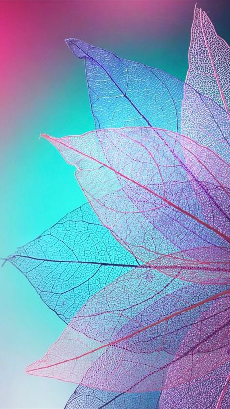 iPhone and Android Wallpapers: Colored Leaves Wallpaper for iPhone and Android