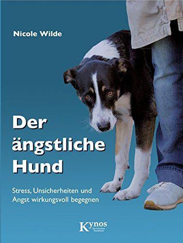 Training Mit Einem Angstlichen Hund Grundlagen Katzen Angstlicher Hund Hunde Huftdysplasie Hund
