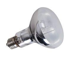 Reptileheatlamp Self Ballasted Mercury Vapor Uvb Bulb Reptile Heat Lamp Heat Lamps Bulb