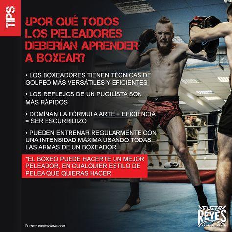 Cletoreyes Workout Boxeo Boxinggloves Box Tip Boxinglife Entrenamiento De Boxeo Boxeo Ejercicios De Entrenamiento