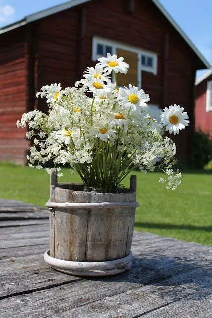Rustic daisies and babies breath in old wooden bucket