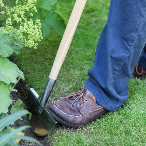RHS Endorsed BURGON /& BALLHalf Moon Lawn Edger