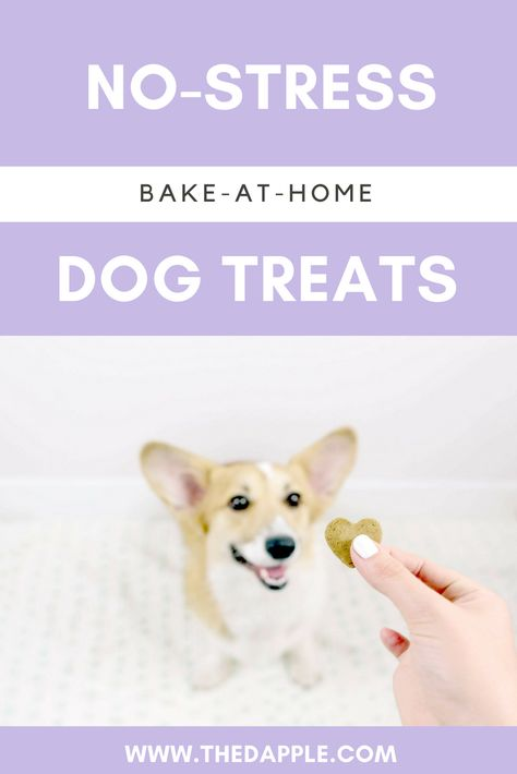 Meet The Brand New Dog Treat We Re Loving Dogs Dog Treats Dog Training