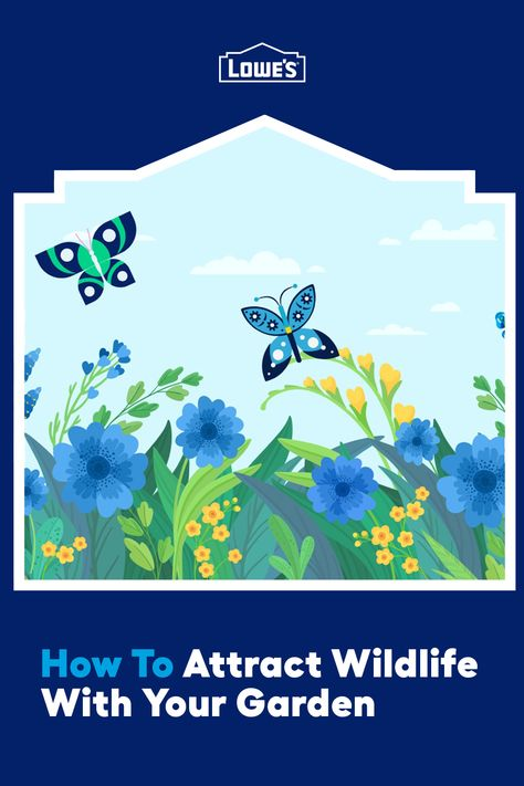 We're helping you design your own butterfly garden that will also attract birds and other beauties by offering them all the comforts of home.