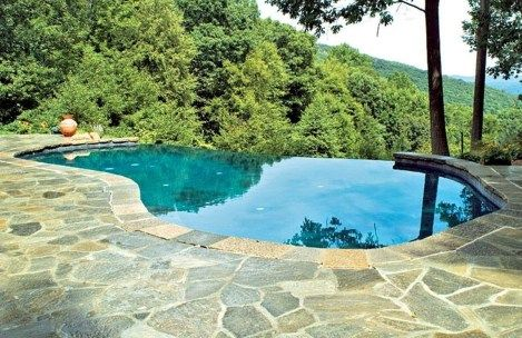 Natural Small Pool Design Ideas 04 Infinity Pool Backyard Backyard Pool Pool Designs