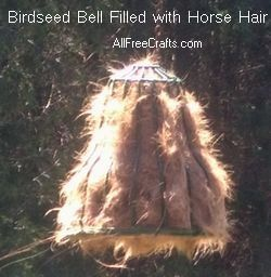 Homemade Oriole Food Nectar Attracting Orioles Bird Crafts Backyard Birds Sanctuary Garden Bird Feeders Oriole Bird