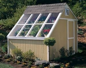Phoenix Wood Greenhouse Kit With Floor 10x8 With Images Building A Shed Backyard Sheds Shed