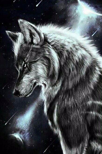 Татуювання вовк – значення, ескізи тату і фото | Татуювання своїми руками | 653x436