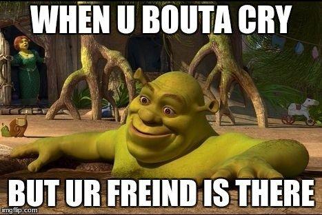 Top 20 Shrek Memes Shrek Memes Shrek Funny Funny Memes