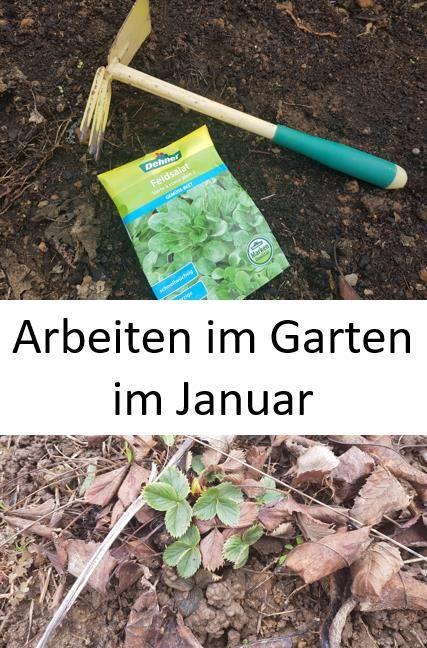 Mit Einigen Handgriffen Im Januar Kann Der Garten Auf Das Neue Gartenjahr Vorbereitet Werden Auch Fur Die Gartenplanung Ist Es Garten Gartenarbeit Gartentipps