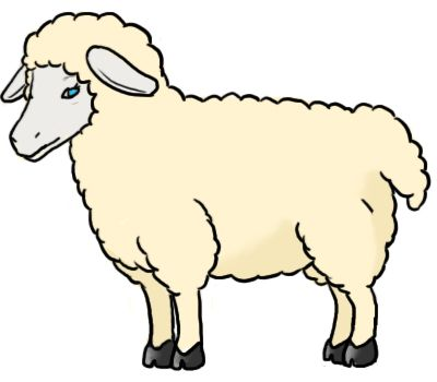 How to draw a sheep  How to Draw  Pinterest  Sheep
