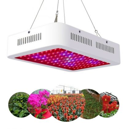 1200w Led Grow Light Full Spectrum Indoor Hydroponic Veg Flower Plant Lamp Grow Lights For Plants Led Grow Lights Grow Lights