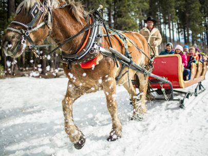 Planning to visit Lake Tahoe this winter? From skiing and snowboarding to sleigh rides and ice skating, there are endless ways to spend a winter day in South Lake Tahoe.