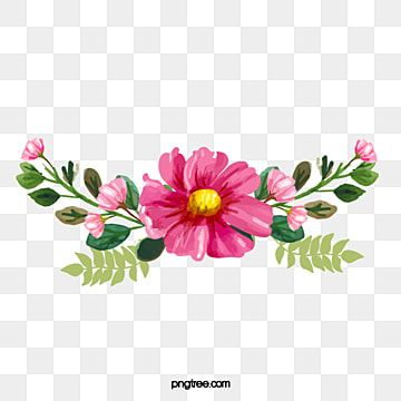 Pin By Devendra Sharma On Fotoshop Red And White Roses Pretty Flowers Pictures Cartoon Flowers