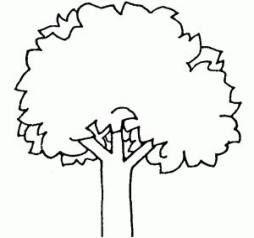 Super Tree Clipart Black And White Ideas Tree Clipart Clipart Black And White Clip Art
