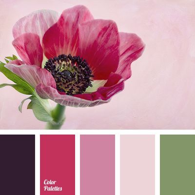 anemone, black, color matching for design, color solution for design, dark-blue, green, lilac, lilac shades, olive, pale pink, pink shades, rose red.