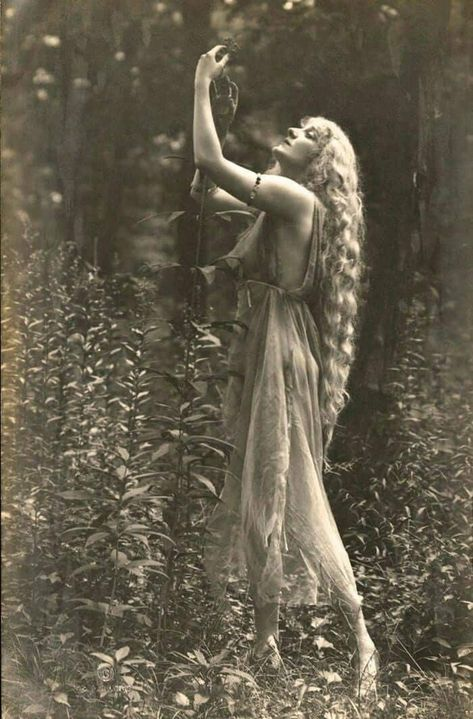 Beltane : Beauty & Bounty. Learn the history of this sacred pagan festival and what you can do to celebrate and honor this spring season.