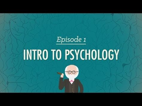Crash Course Psychology (Playlist) -- As always, Hank Green does a phenomenal (hey! pun!) job of making science relatable, digestible, and fascinating. Love this series!