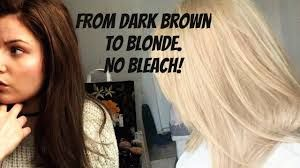 Bleach Dark Brown Or Black Hair To Platinum Blonde Or White