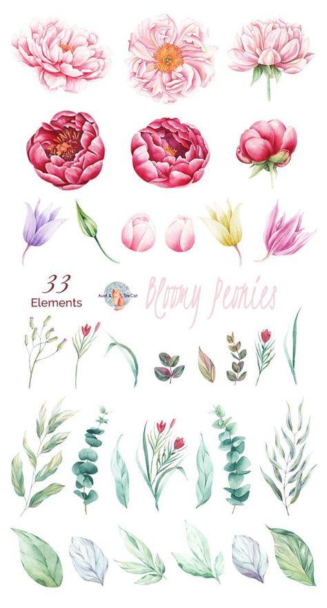 Watercolor Bloomy Peonies Elements Flowers Hand Painted, Floral, Peonies, Wedding Invitation, Greeti