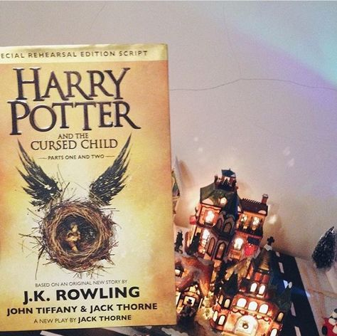 Harry Potter And The Cursed Child Cursed Child Cursed Child Book Potter