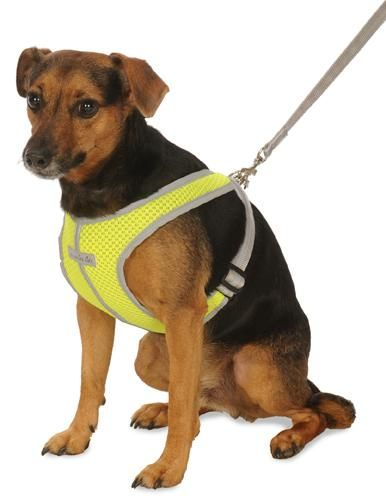 3101 Precision Fit Reflective Mesh Sport Harness Dog Harness
