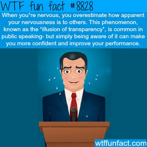 illusion of transparency wtf fun facts