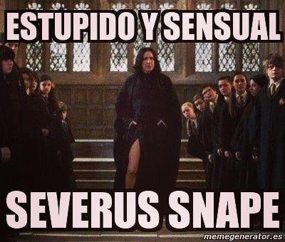 Pin By Glorymar Nani Rivera On Severus Snape Harry Potter Memes Hilarious Harry Potter Reddit Memes