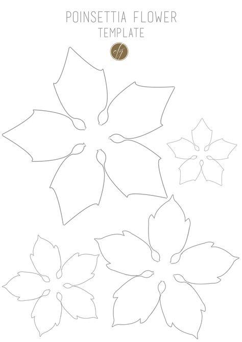 Poinsettia flower template III copy Poinsettia flower - flower template