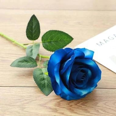 23 Gambar Setangkai Bunga Mawar Biru Jual Bunga Mawar Setangkai Online Harga Baru Termurah Download Setangkai Bunga Mawar Da Mawar Biru Bunga Gambar Bunga