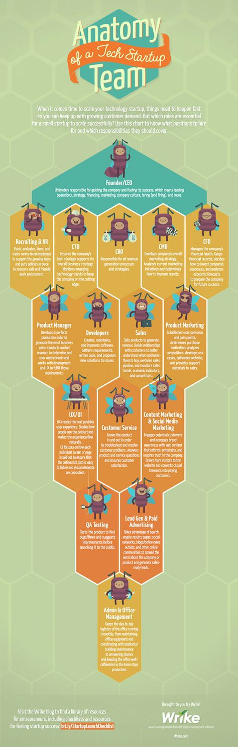 Anatomy of a Tech Startup Team [Infographic]