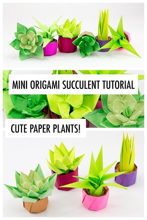 Learn how to make an origami succulent! These origami plants make perfect gifts & decorations, your friends will love them. No cutting or glue required.