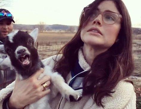 Anna}} I kind of got a pet alpaca...