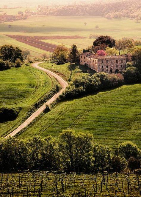 une jolie vue vers les champs d'italie, agritourisme toscane, séjour en toscane