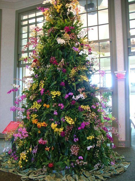 Orchid Christmas Tree.Orchid Christmas Tree By Dmg5440 On Deviantart Mes Fleurs