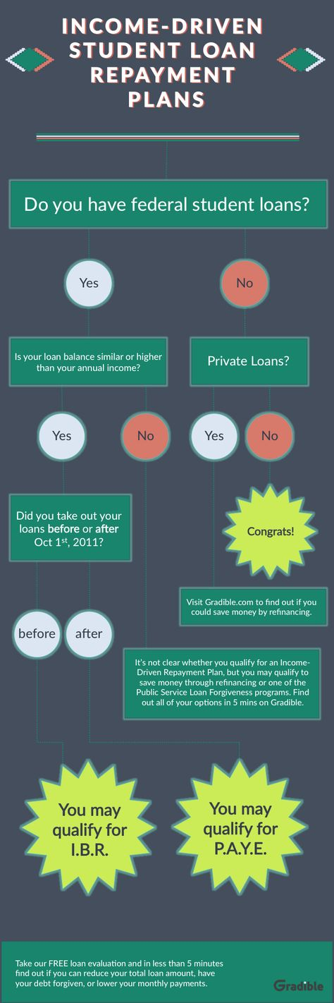 Student Loan Repayment Log This Form Informs And Motivates
