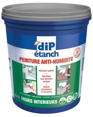 Peinture Anti Humidite Murs Interieurs Dip Gris Galet 0 75l En 2020 Peinture Anti Humidite Humidite Mur Et Anti Humidite