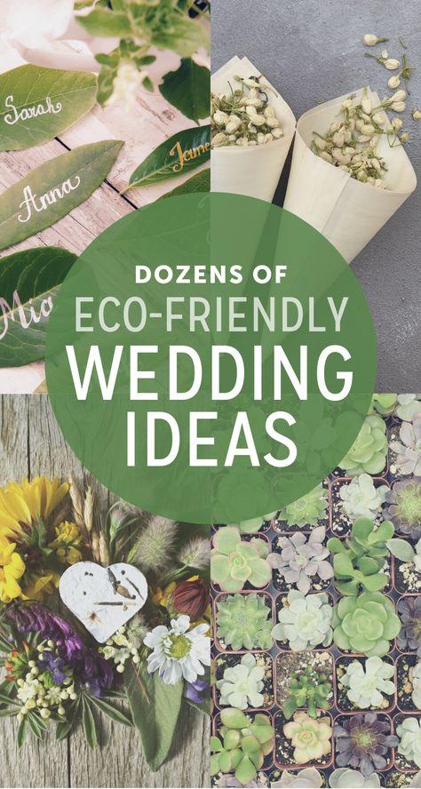 Eco-friendly Wedding Ideas   The Budget Savvy Bride