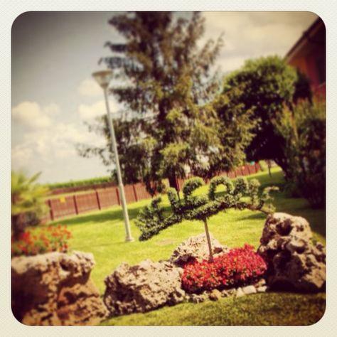 Tutti sono i benvenuti all'hotel Lo Scoiattolo!!!