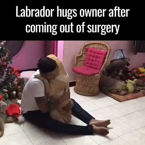 Try not to cry. 😭😭 Tag that person who loves his/her dog so much.