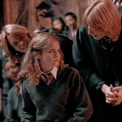 Icon Gêmeos Weasley & Hermione
