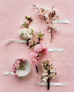 Sakura Tree Yahoo Image Search Results Gambar Bunga Bunga Gambar