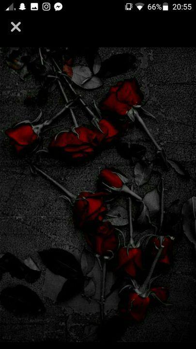 Sztosik Tapety Roze Rose Day Pic Dead Rose Wallpaper Dead Rose Aesthetic Dark red rose aesthetic wallpaper
