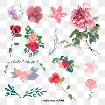 Rose Watercolor Rose Clipart Watercolor Clipart Flowers Png