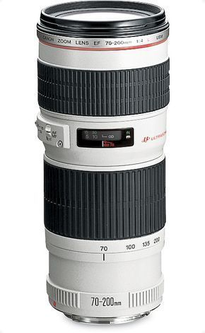 Lowly Dslr Camera For Beginners Photography Basics Dslrmurah Photographygearideas Canon Slr Camera Camera Photography Canon Lens