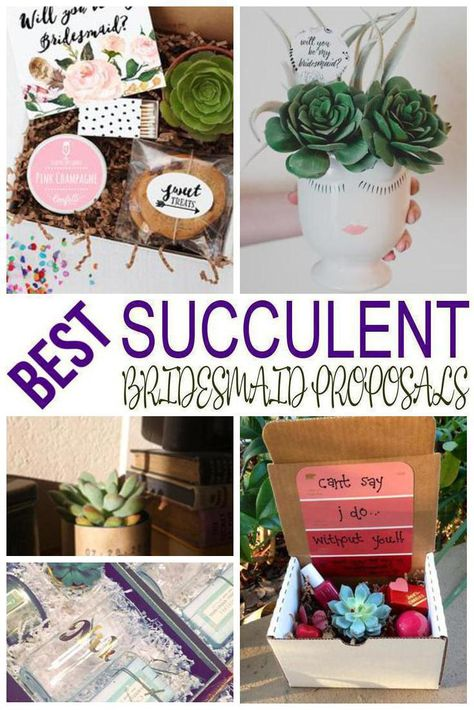 Bridesmaid Proposal! Find the best succulent bridesmaid proposal ideas! From DIY ideas to box ideas to card ideas to kits you can find creative, unique, simple, easy and fun bridesmaid proposals. Great gifts for your feature bridal party - can be used as maid of honor proposals, junior bridesmaids and flower girl proposals too. Get the best succulent  Bridesmaid Proposal ideas now!