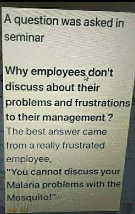 An Employee Don T Leave The Company But He She It Leaves His Her Its Manager Work Quotes Funny Work Quotes Funny Quotes