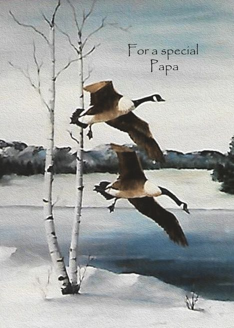 Goose For Christmas 2020 Christmas For Papa Painting Flying Canadian Geese card in 2020