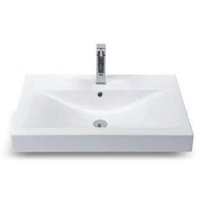 Wall Mount Sinks Bathroom Sinks The Home Depot Wall Mounted