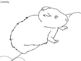 Idea By Elizabeth Osborn On Animals In 2020 Coloring Books